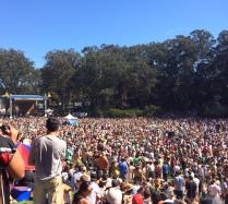 Massive Crowd