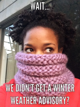 Plum Cowl by KnitsbyWhitSF