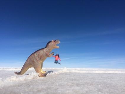 Salt Flats-High 5